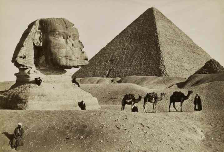 Sphinx, Great Pyramid, and a line of three camels.
